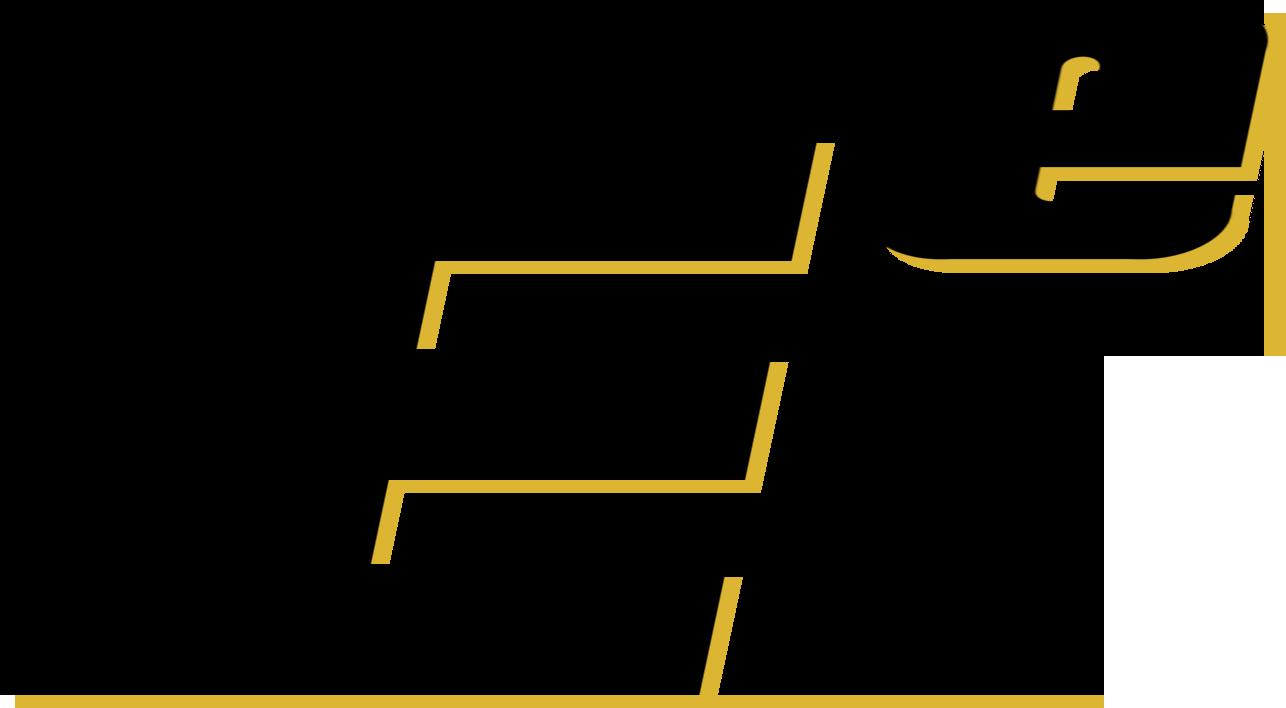 T2GO logo